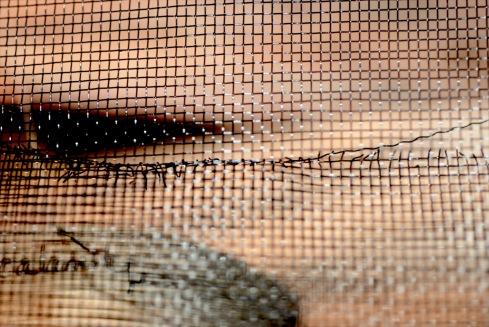 Chris Turnbull screen-close-up